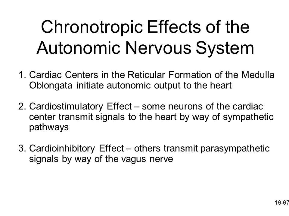 Chronotropic Effects of the Autonomic Nervous System