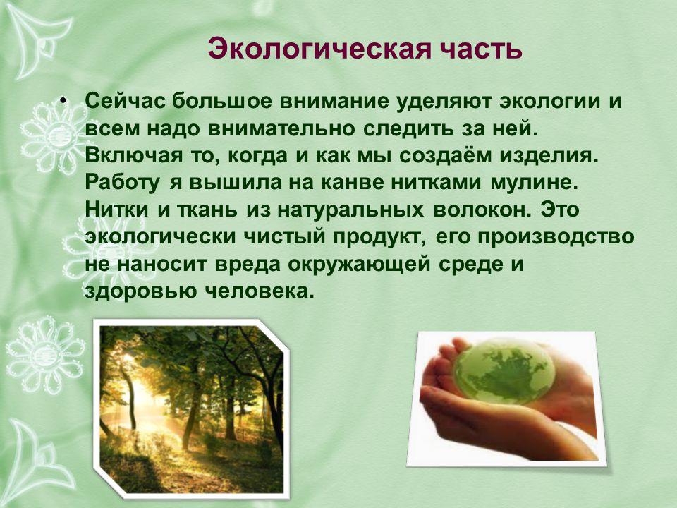 Экологическая часть