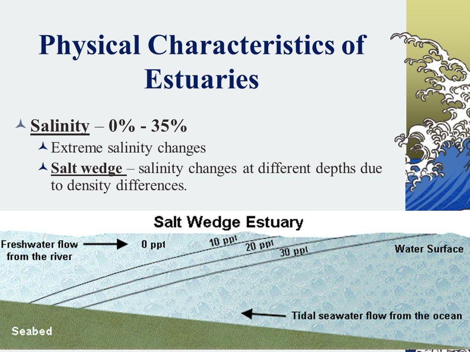 Physical Characteristics of Estuaries