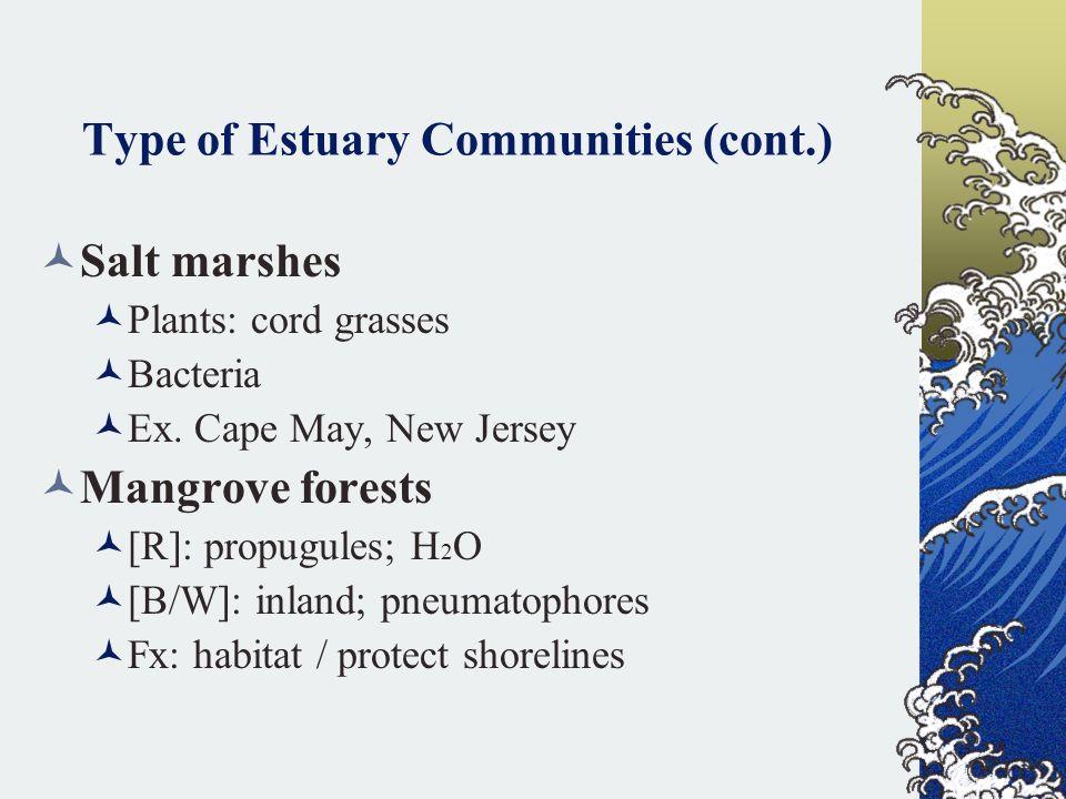 Type of Estuary Communities (cont.)