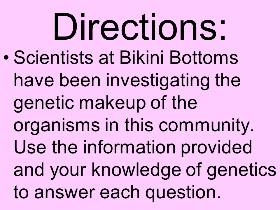 Bikini Bottom Genetics ppt download – Bikini Bottom Genetics Worksheet