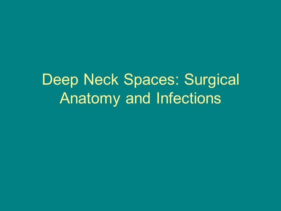 Deep Neck Spaces Surgical Anatomy And Infections Ppt Video Online