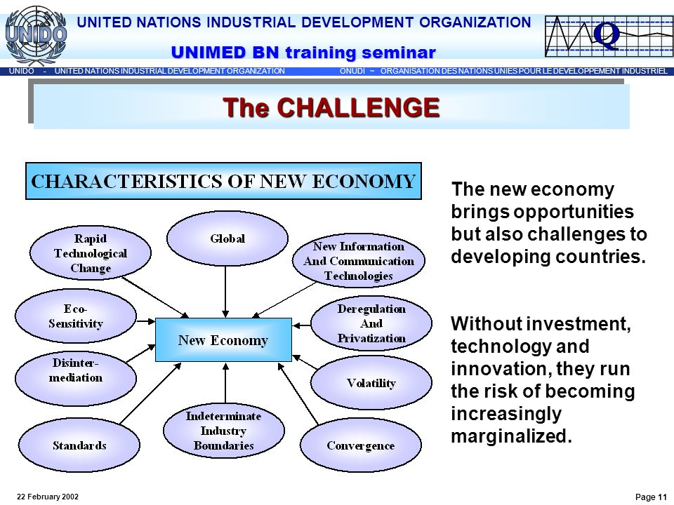 The CHALLENGE The new economy brings opportunities but also challenges to developing countries.