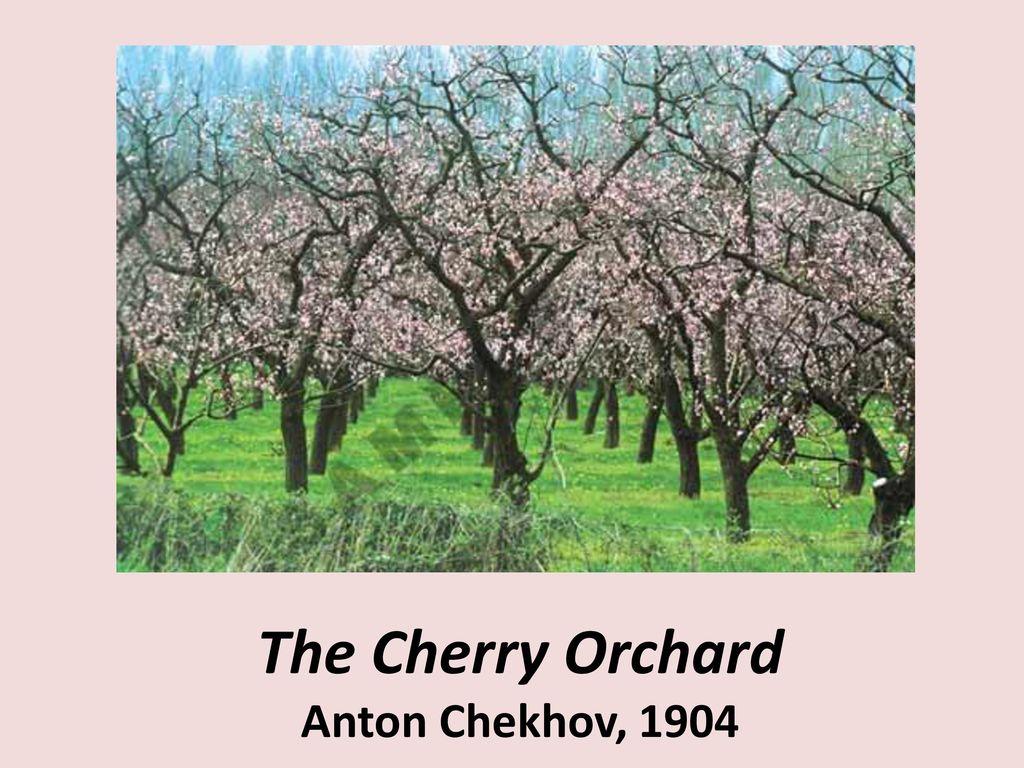 symbolism in the cherry orchard by anton chekhov