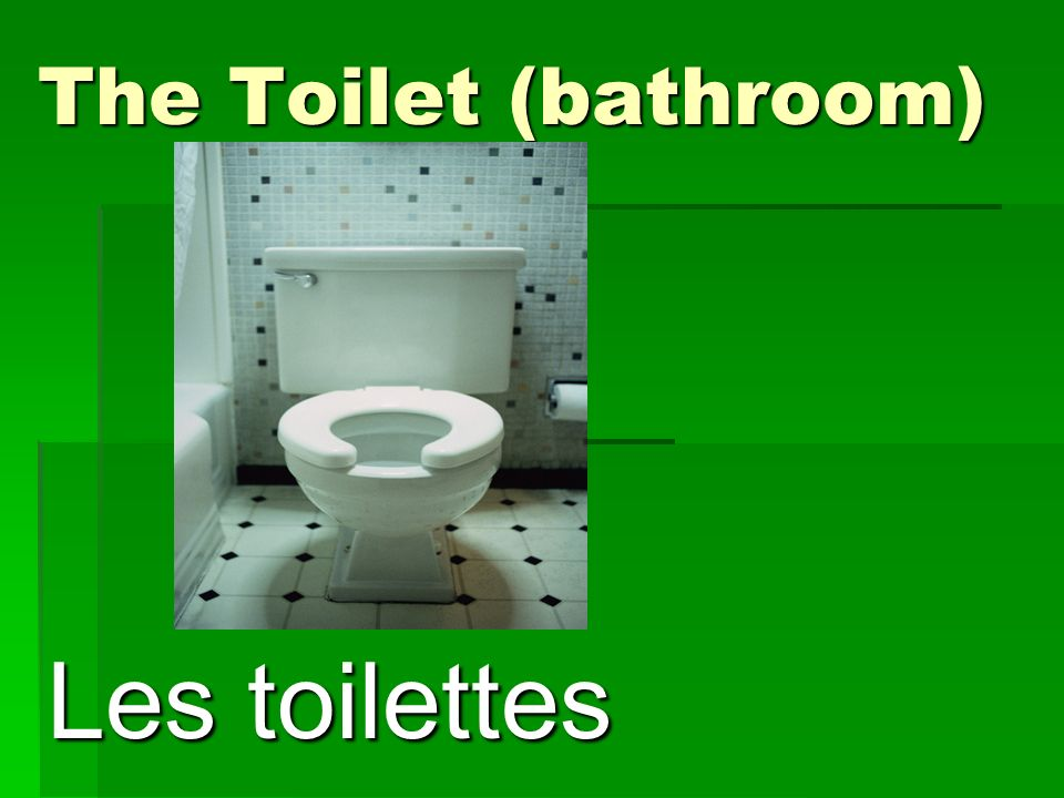 The Toilet (bathroom) Les toilettes