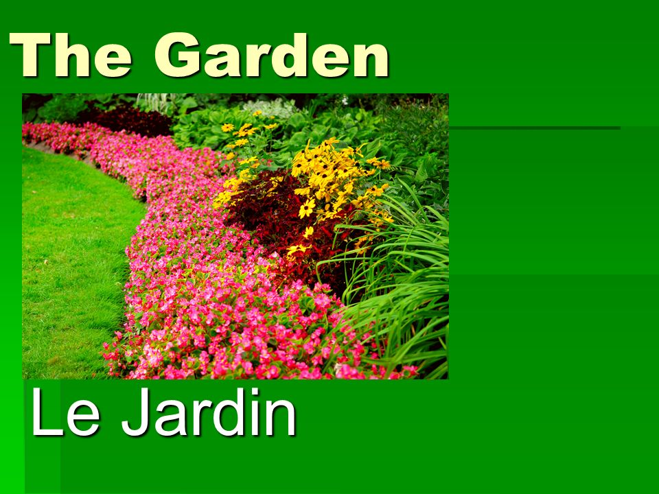 The Garden Le Jardin