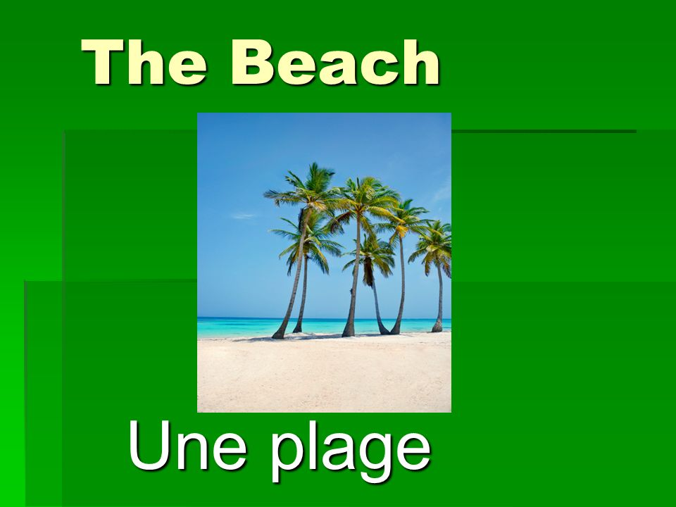 The Beach Une plage