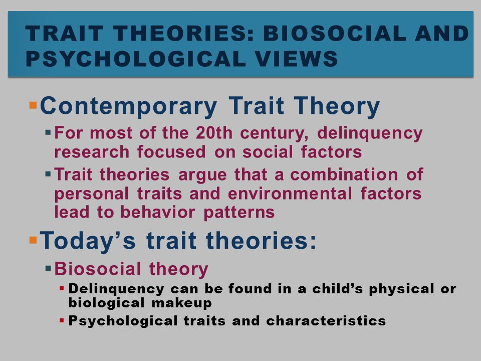 JUVENILE DELINQUENCY, THEORIES OF
