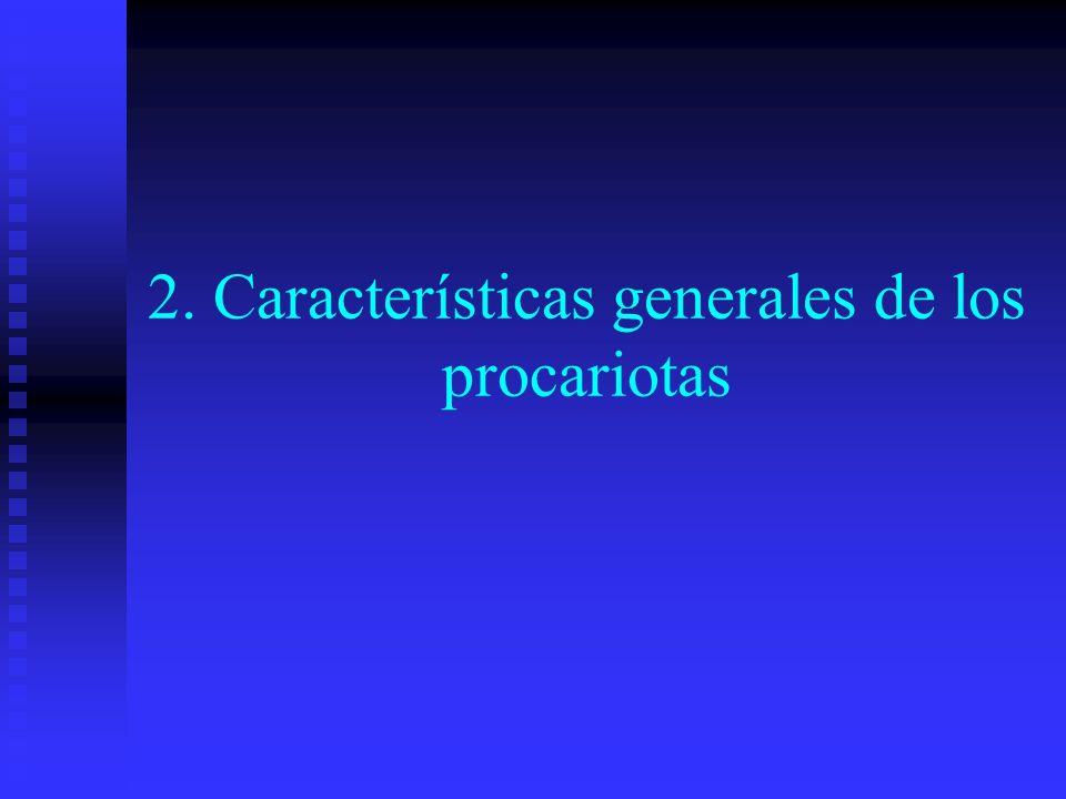 2. Características generales de los procariotas
