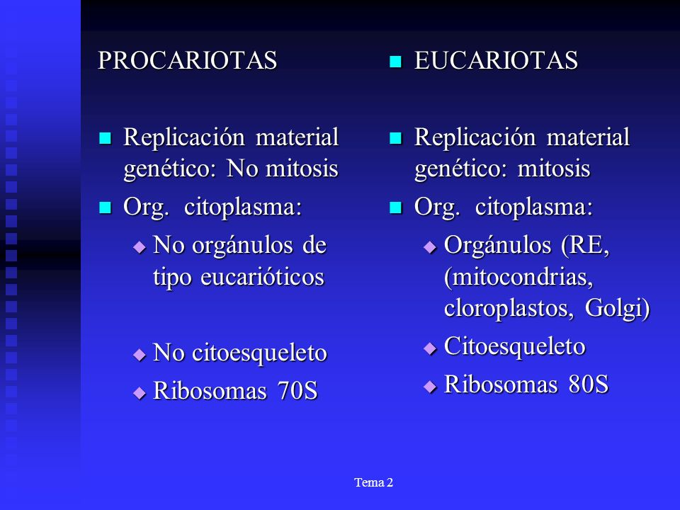 Replicación material genético: No mitosis Org. citoplasma: