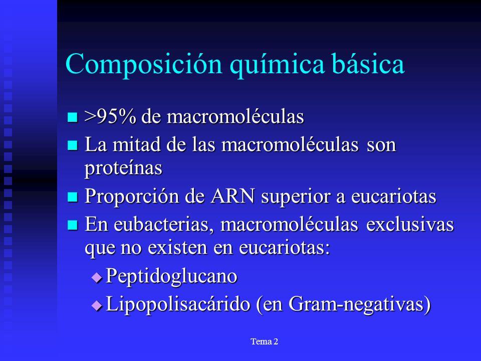 Composición química básica
