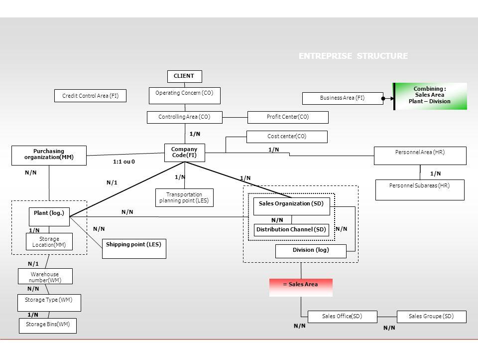 ENTREPRISE STRUCTURE CLIENT Combining : Sales Area Plant – Division