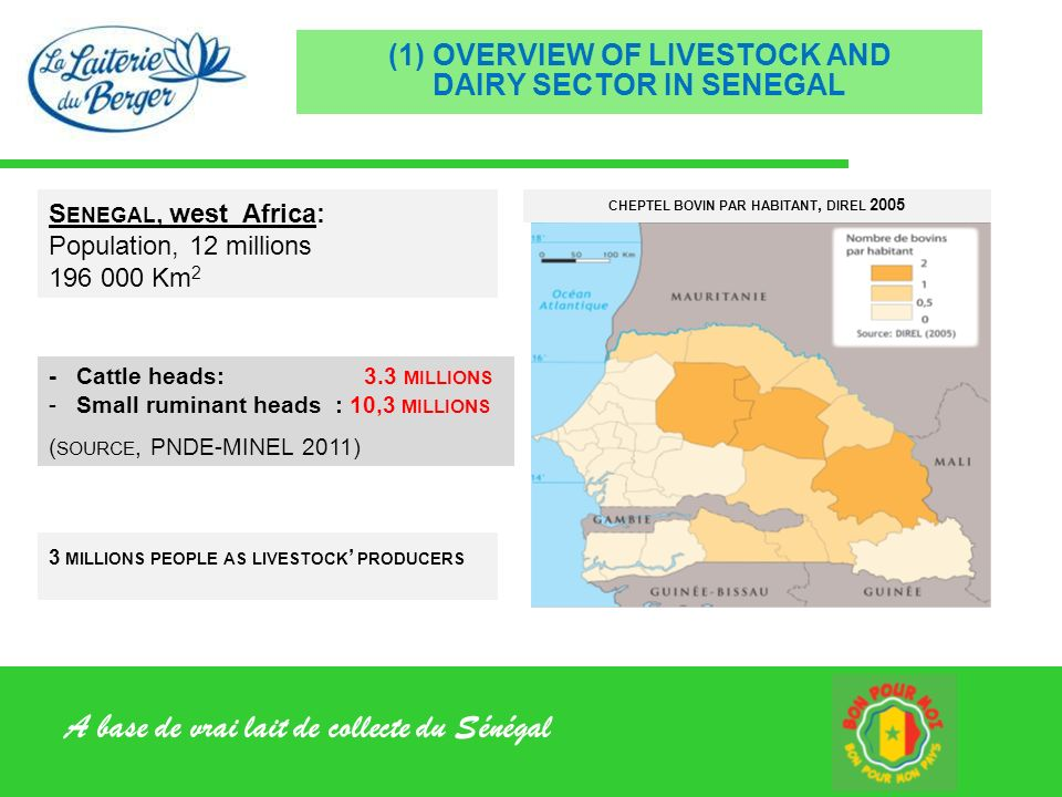 (1) OVERVIEW OF LIVESTOCK AND DAIRY SECTOR IN SENEGAL