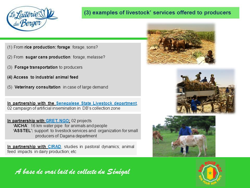 (3) examples of livestock' services offered to producers