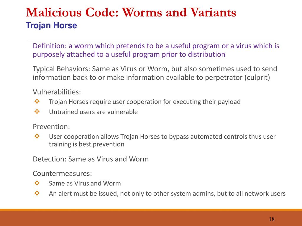 malicious code essay Malicious code-writing subculture the , interviews with successful malicious code hackers, essays the history of malicious mobile code has shown us that it.