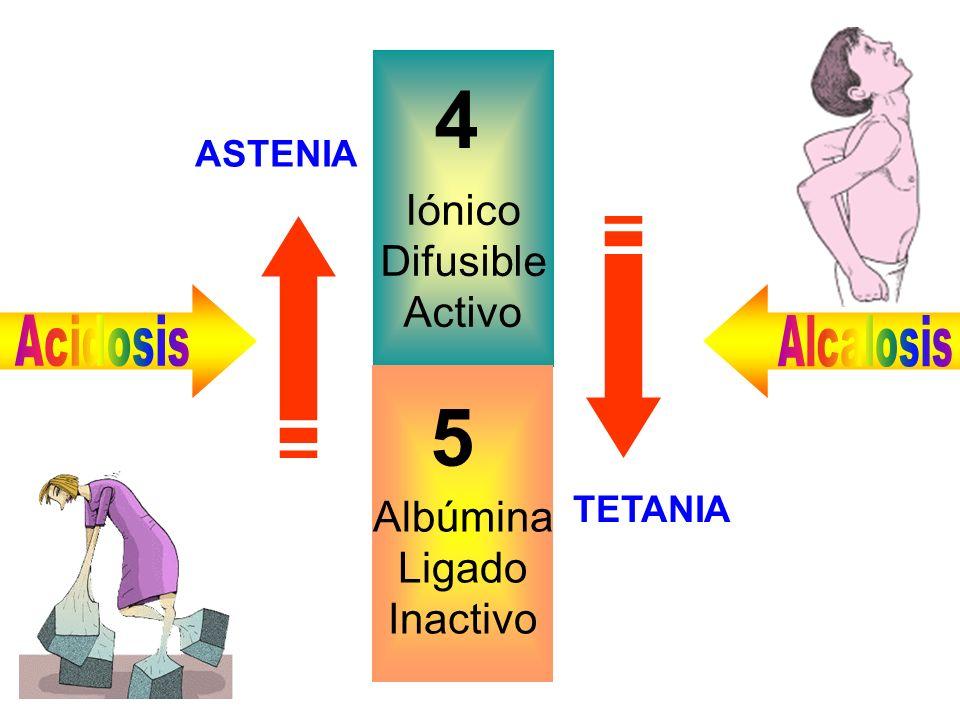 4 5 Iónico Difusible Activo Albúmina Ligado Inactivo ASTENIA Acidosis