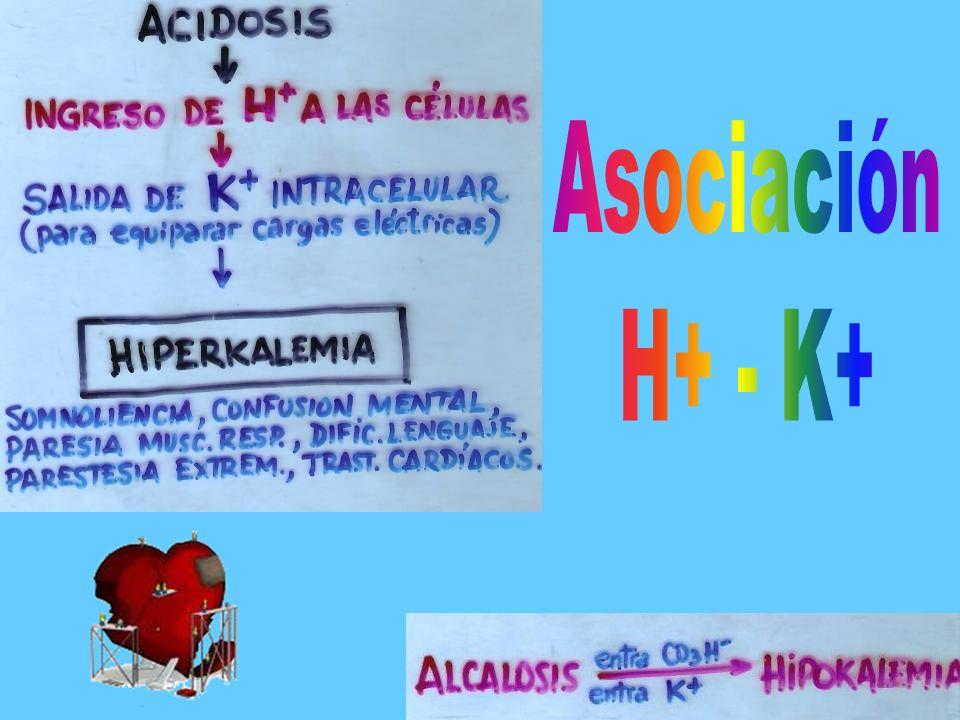 Asociación H+ - K+