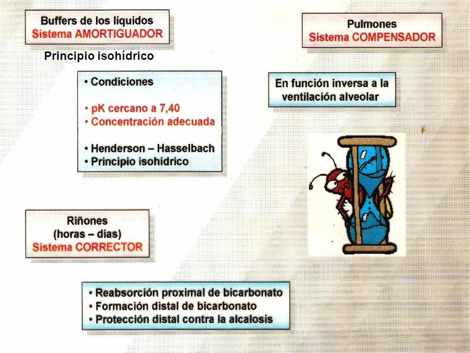Principio isohídrico
