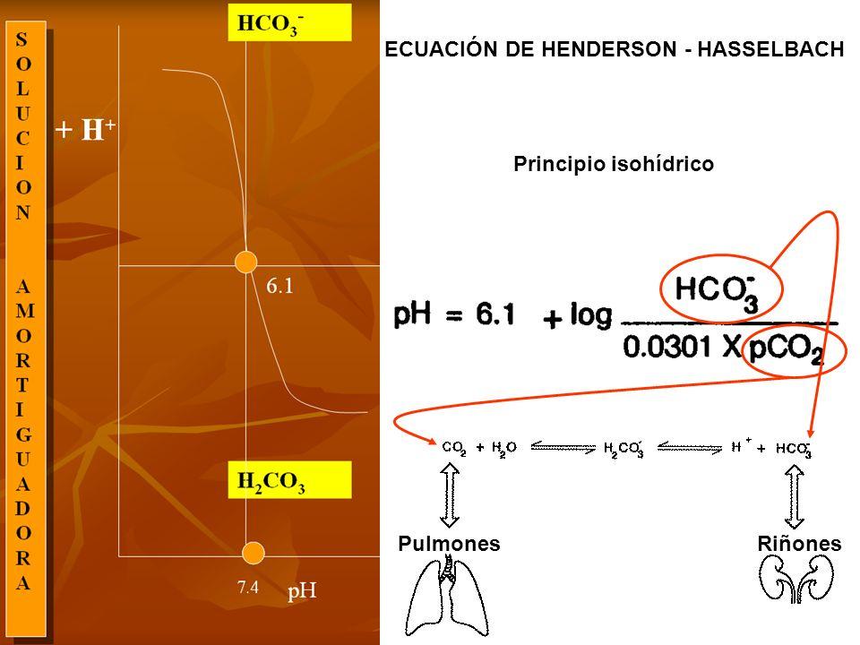 ECUACIÓN DE HENDERSON - HASSELBACH