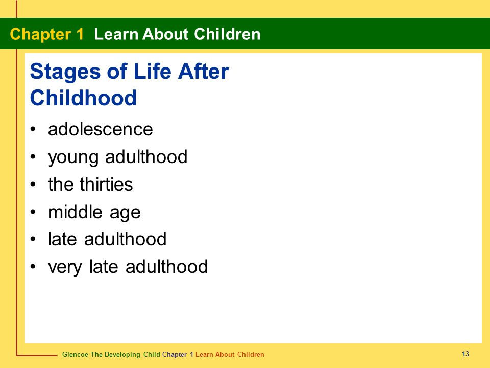 Stages of Life After Childhood