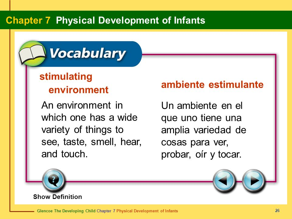 stimulating environment ambiente estimulante