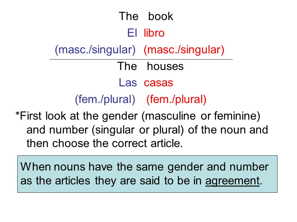 The book El libro. (masc./singular) (masc./singular) The houses. Las casas. (fem./plural) (fem./plural)