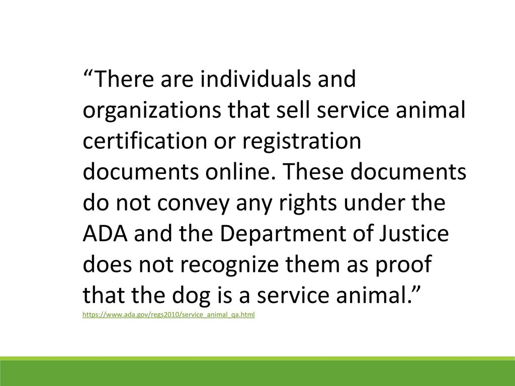 Animals campus or a zoo ppt download there are individuals and organizations that sell service animal certification or registration documents online 1betcityfo Choice Image