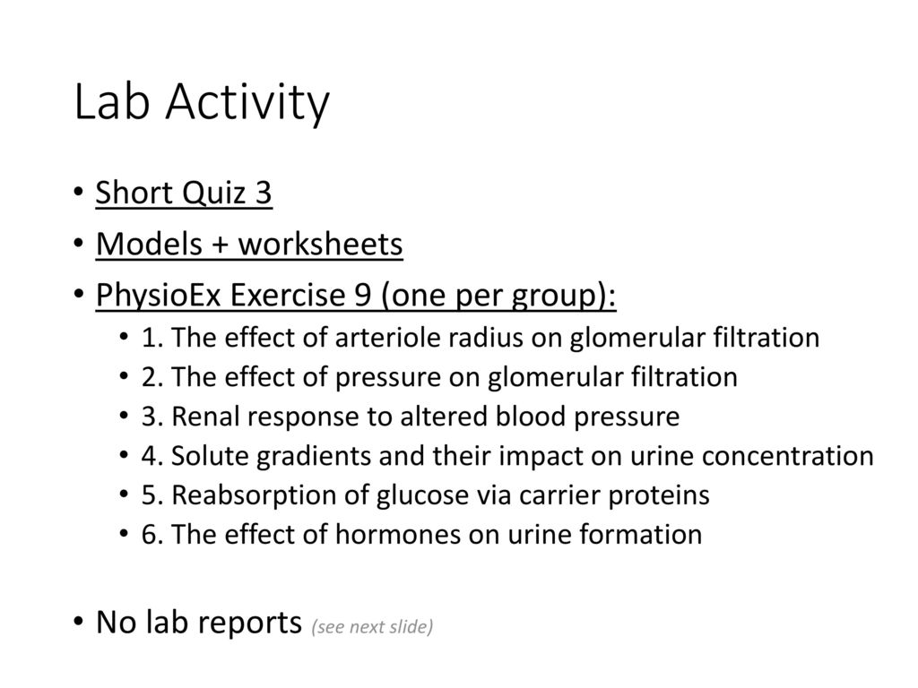 physioex 10 lab report [physioex chapter 10 exercise 4] pex-10-04  solved by ramonistry exercise  10: acid-base balance: activity 2: rebreathing lab report pre-lab quiz results.