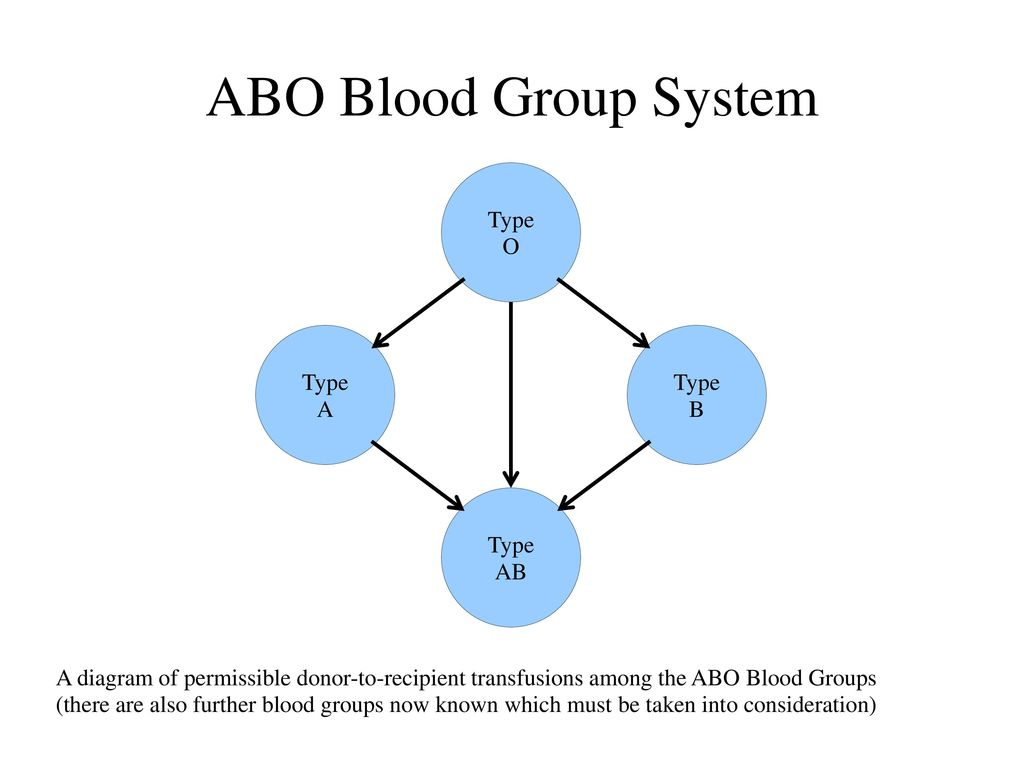 Applying a frequency distribution to a hazard assessment question abo blood group system type o type a type b type ab pooptronica