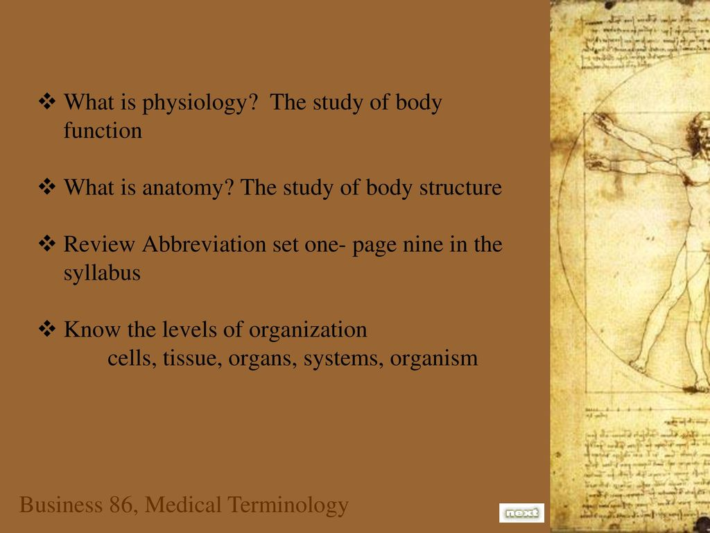 What is anatomy the study of