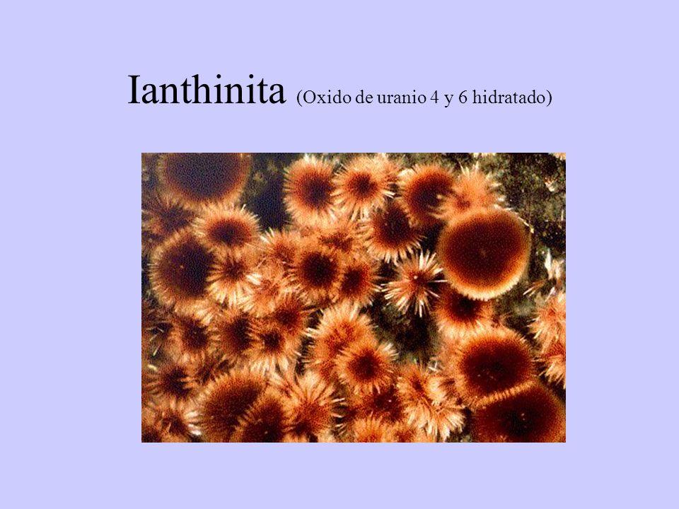 Ianthinita (Oxido de uranio 4 y 6 hidratado)