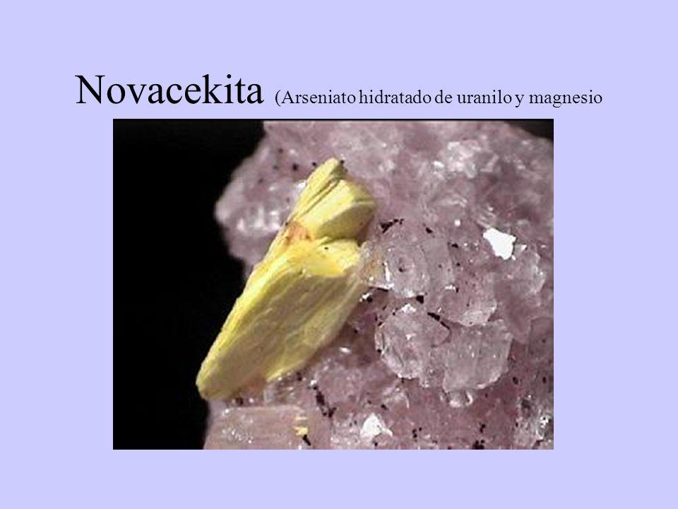 Novacekita (Arseniato hidratado de uranilo y magnesio