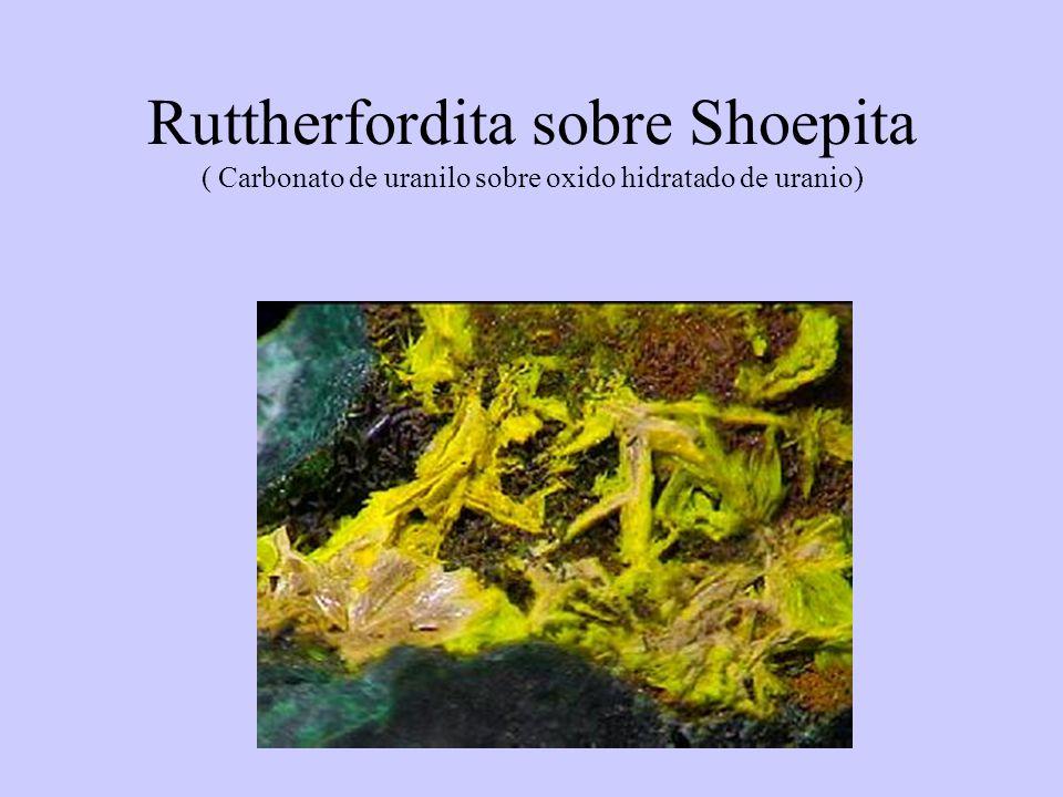 Ruttherfordita sobre Shoepita ( Carbonato de uranilo sobre oxido hidratado de uranio)
