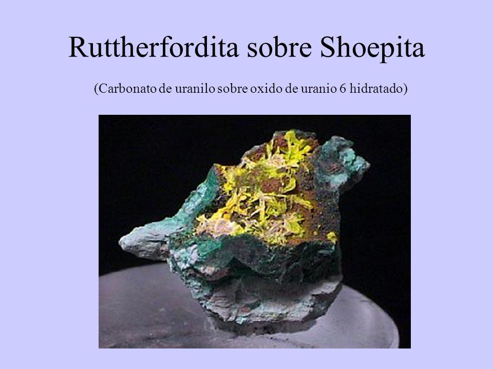 Ruttherfordita sobre Shoepita (Carbonato de uranilo sobre oxido de uranio 6 hidratado)