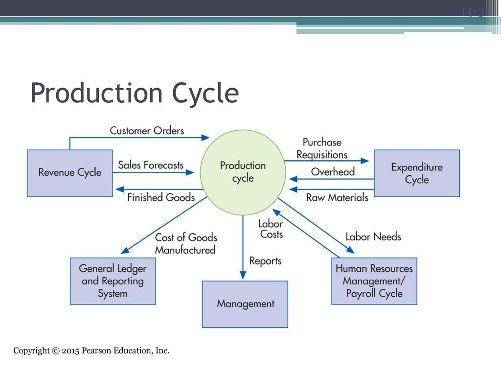 The production cycle chapter ppt download 3 production cycle pooptronica Choice Image