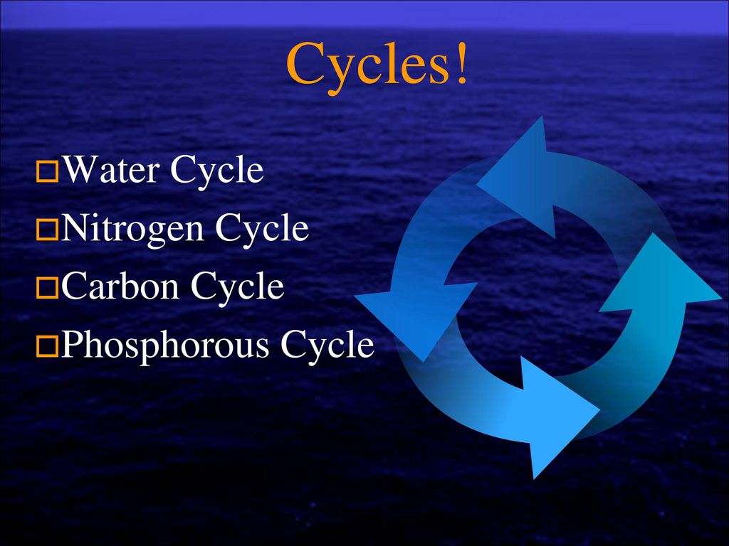 water cycle sci 207 Sci 207 week 3 discussion 1 water cycle the global water cycle provides renewable water, but a number of.
