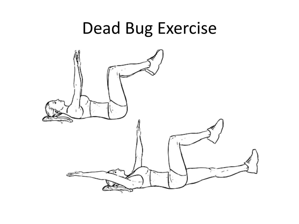 therapeutic exercises for low back pain  an overview