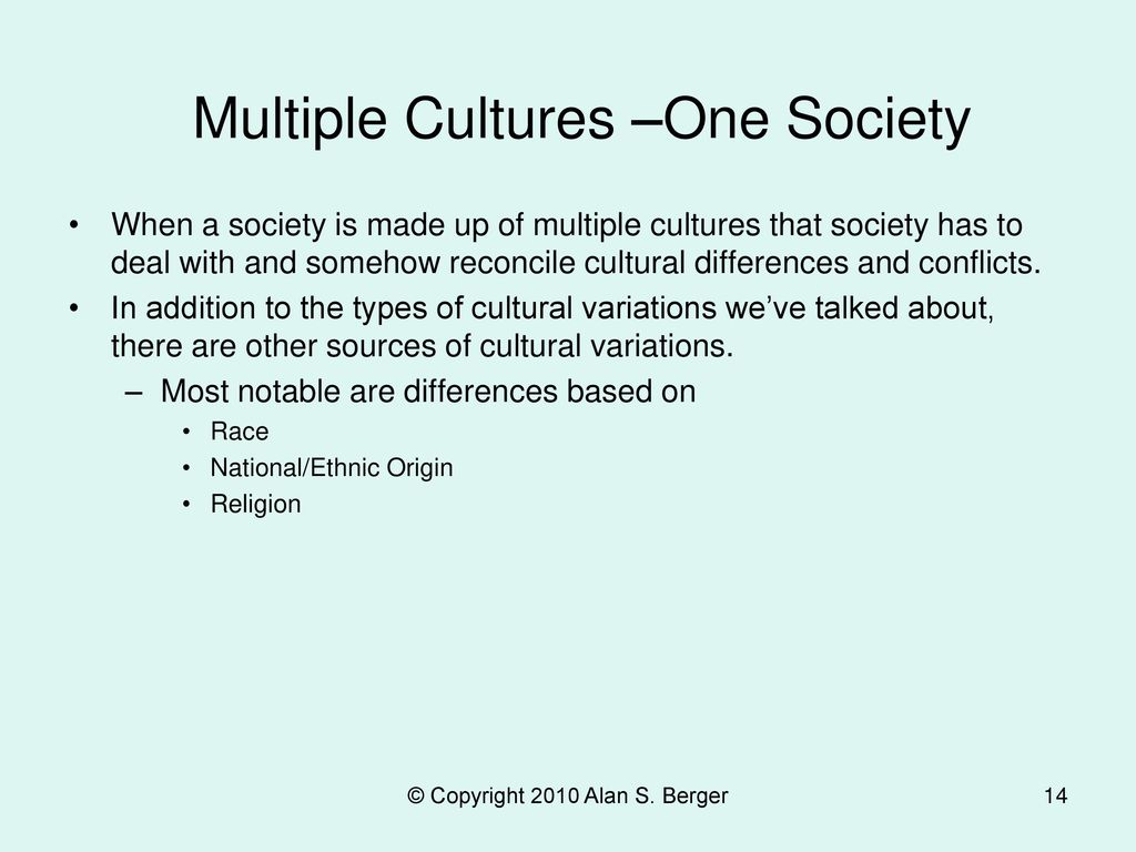 Multiple Cultures –One Society