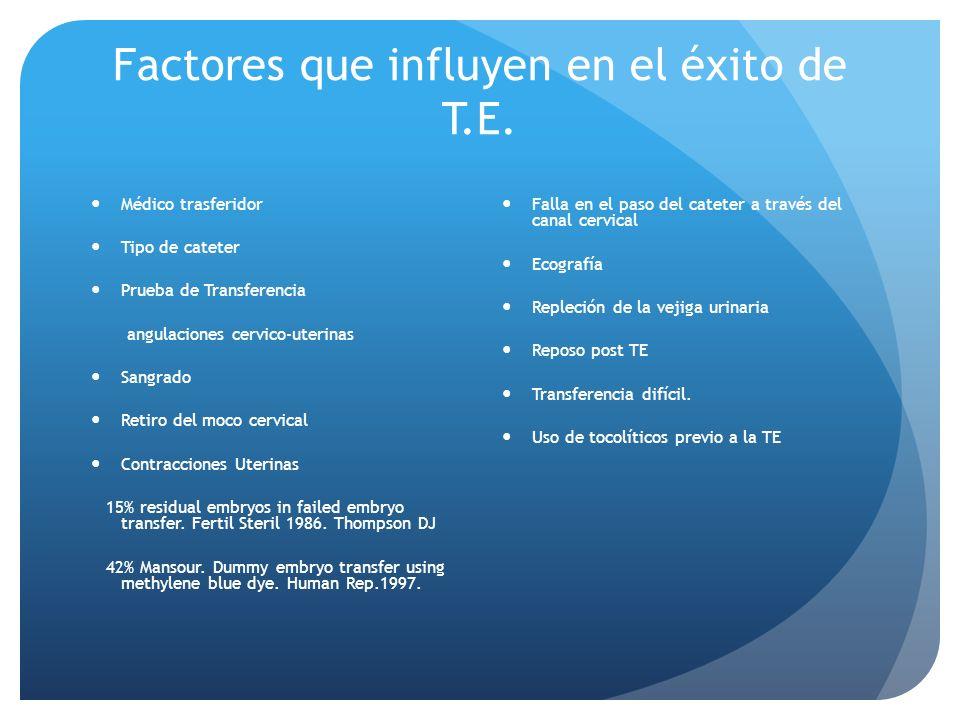 Factores que influyen en el éxito de T.E.