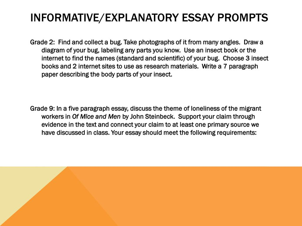 essay informative topics