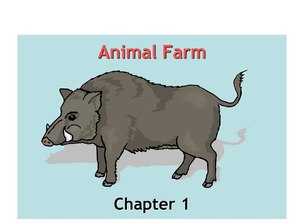 Chapter questions of animal farm englis