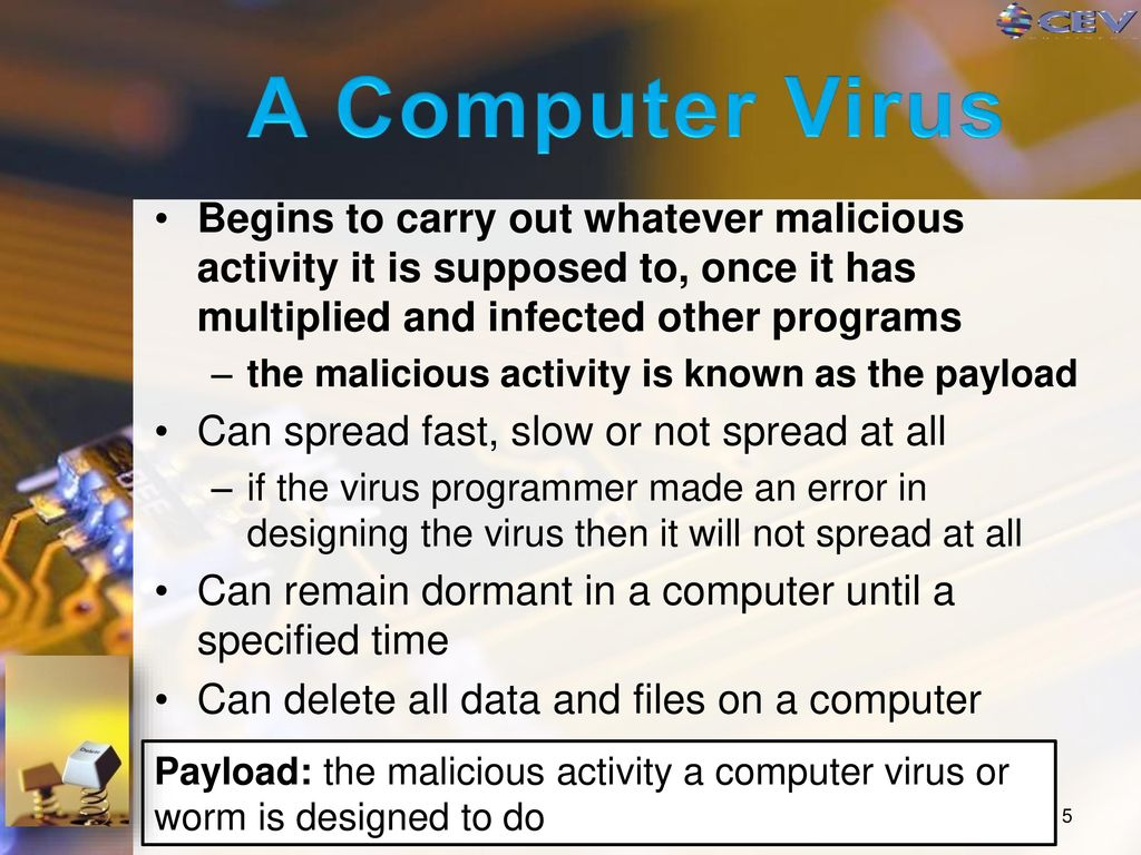 a history and the characteristics of malicious computer viruses Computer viruses come and computer  which is the worst computer virus in history  the recipients triggering a malicious programme which plundered.