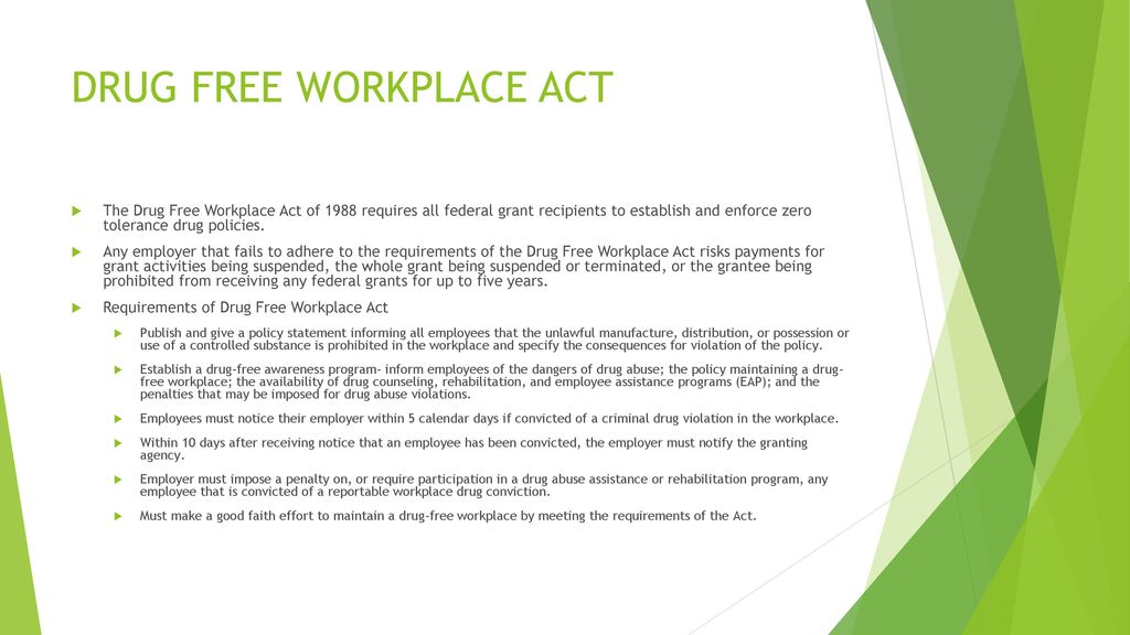 2 drug free workplace policy program If an employer fails to maintain a drug-free workplace program in  a 2-year period after completion of the program  a program or policy for drug.