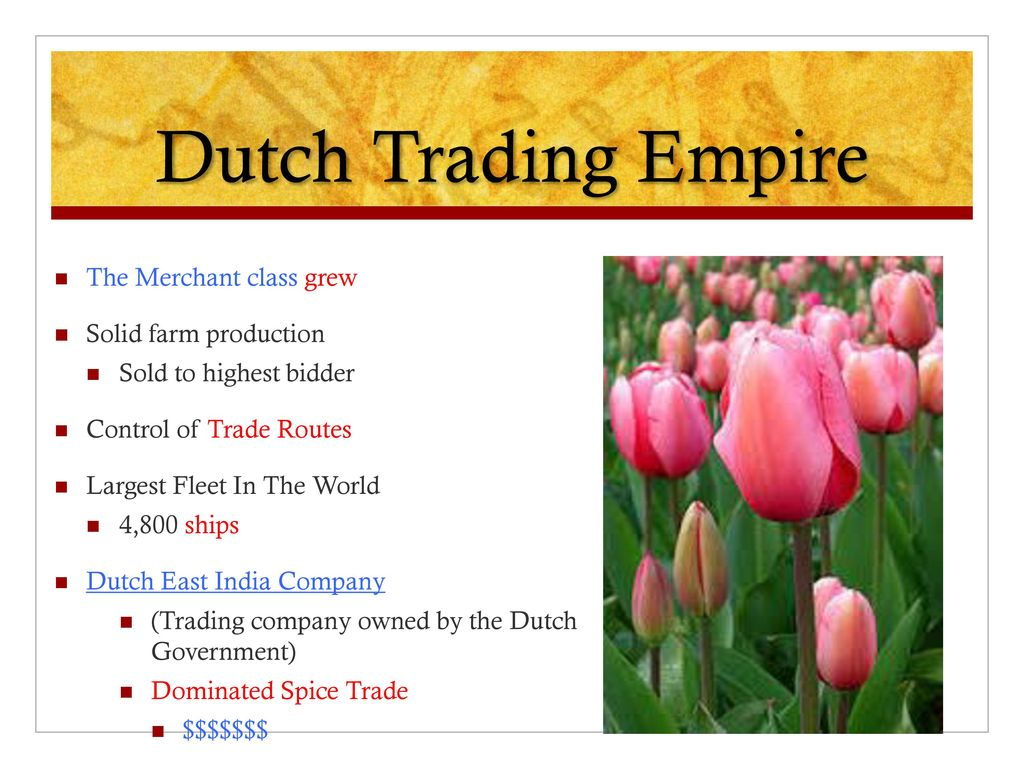 Option trading company netherlands