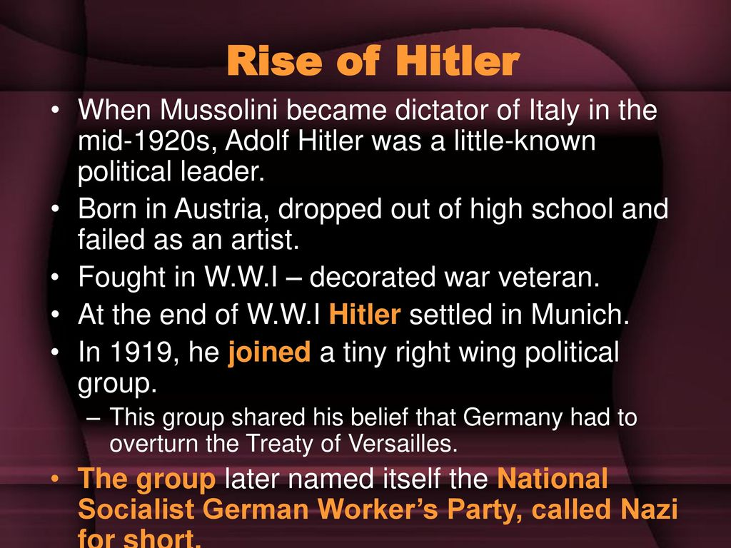 nazi party rises to power How did the nazi consolidate their power percentage of votes gained by the major german political parties in reichstag elections, 1924-1932 the nazis were seen as the strongest group capable of preventing what others saw as the threat of communism.