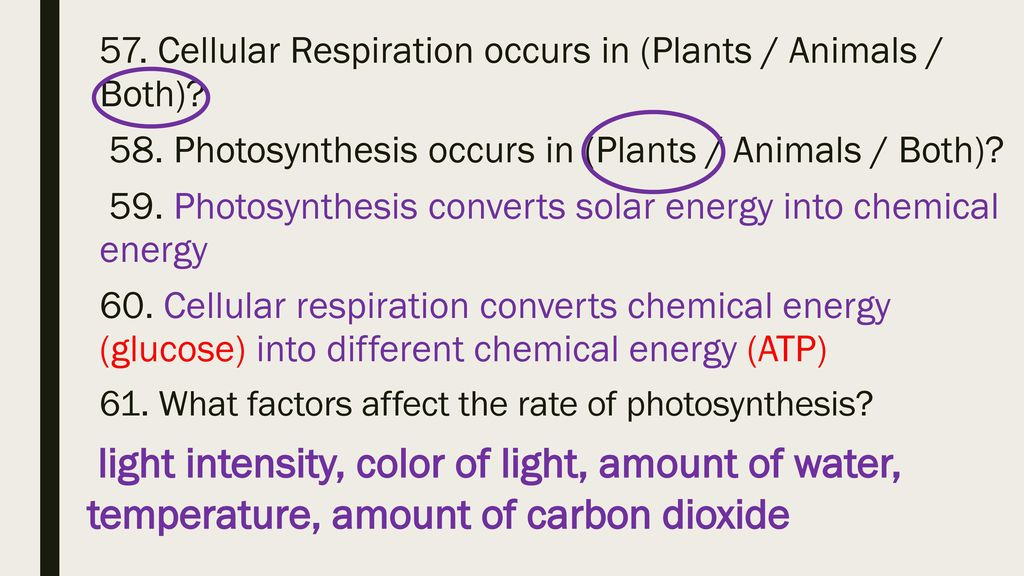 how carbon dioxide may affect organisms The carbon cycle is the process in which carbon atoms are  all living organisms, the carbon cycle is the name given to  air as carbon dioxide.