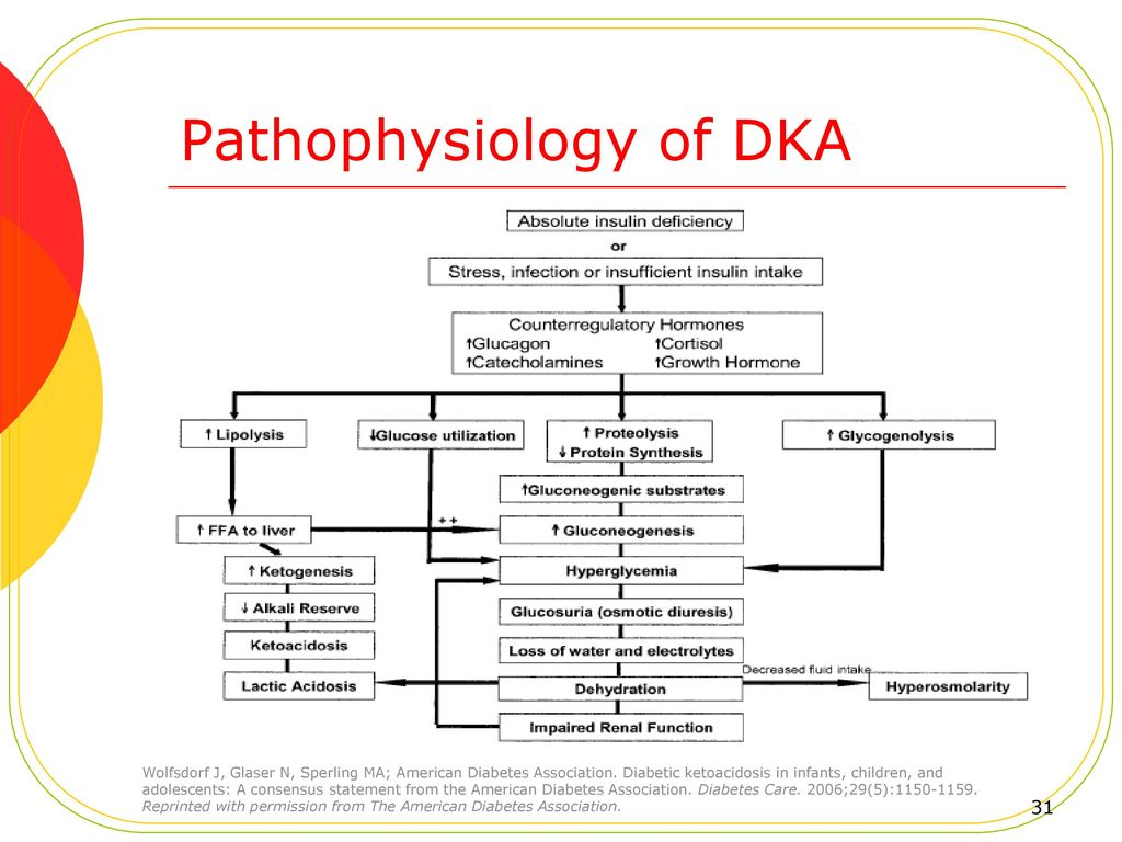 Pediatric hyperglycemia and diabetic ketoacidosis dka ppt download pathophysiology of dka pooptronica