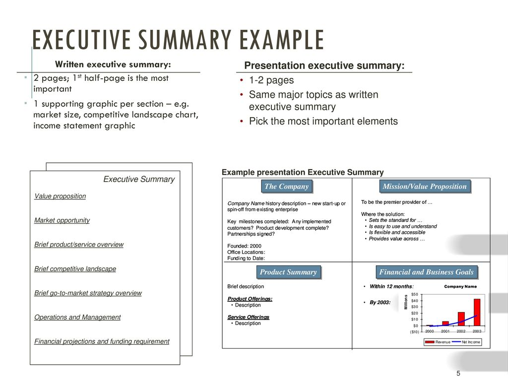 executive summary business plan ppt free