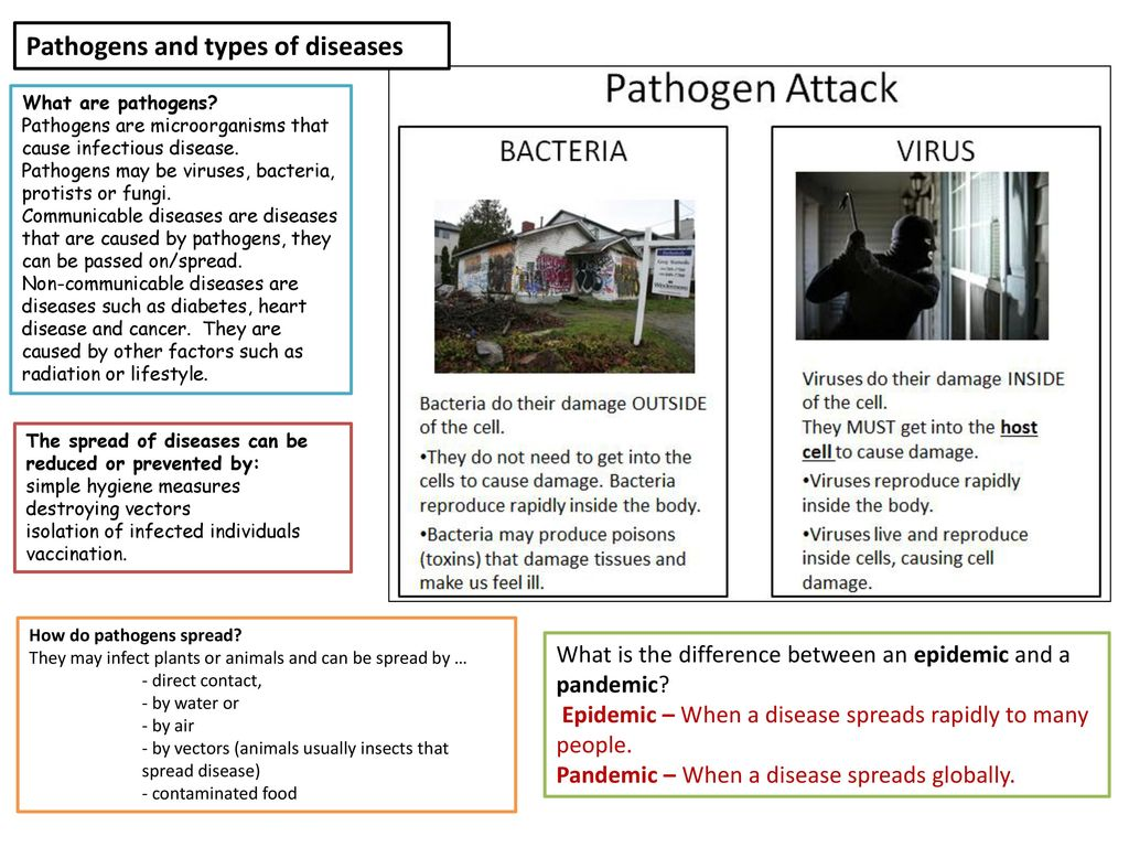 pathogens and the spread of disease essay Infectious diseases spread via air, personal contact, soiled objects, skin, mucous membrane meningococcal disease rubella spread through the air by aerosol.