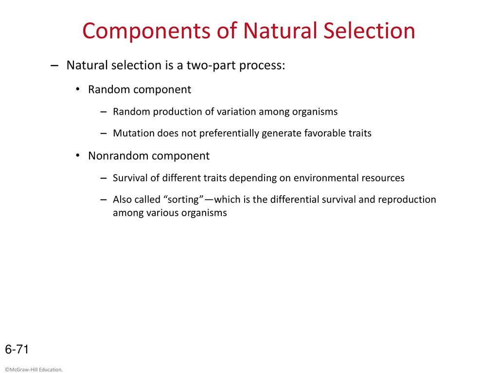 Darwin S Observations And Inferences Of Natural Selection